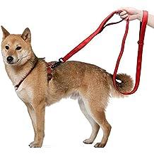 0f7013fd01f922 Kaka mall Führleine Hund Pet strapazierfähiges Hundeleine Nylon Material  Gurt Gepolstert Doppelgriff Hunde Leine für Hunde