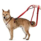 Kaka mall Führleine Hund Pet strapazierfähiges Hundeleine Nylon Material Gurt Gepolstert Doppelgriff Hunde Leine für Hunde(Orange)