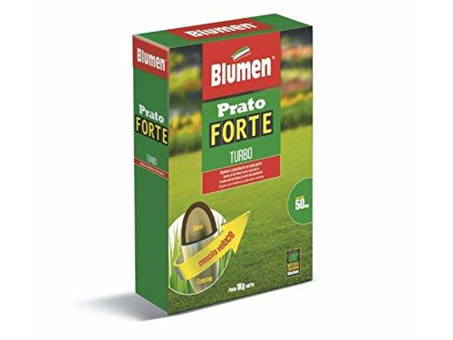 Blumen Prato Forte Turbo - Sementi