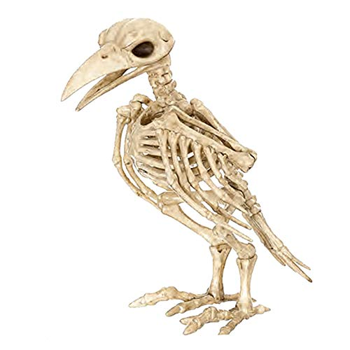 Matthew00Felix Skeleton Raven Kunststoff-Tier-Skelett-Knochen für Horror-Halloween-Dekoration