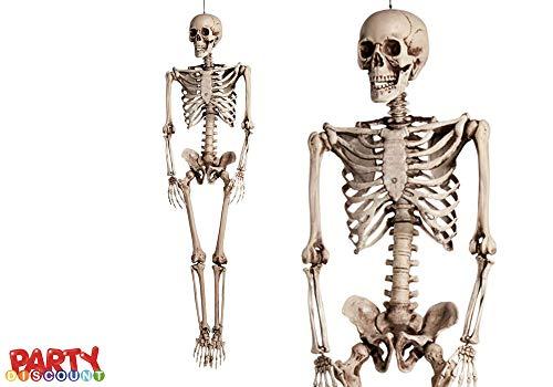 PARTY DISCOUNT ® Deko-Figur Modell-Skelett, 160 cm