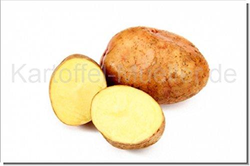 Kartoffel Müller Marabel -Neue Ernte- 2,5kg