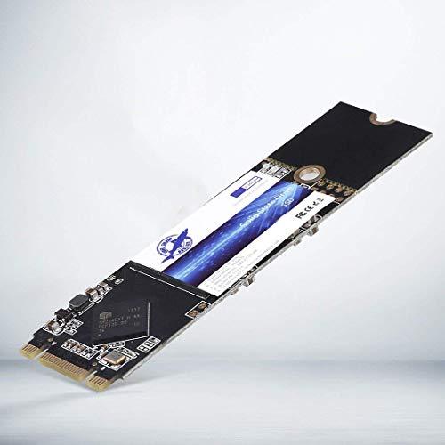 Dogfish SSD M.2 2280 500GB Solid State Drive Ngff Internen Desktop Computer 6Gb/s High Performance Festplatte Aus Bislang 120GB 240GB 256GB 480GB 500GB 1TB 2TB (500GB, M.2 2280)