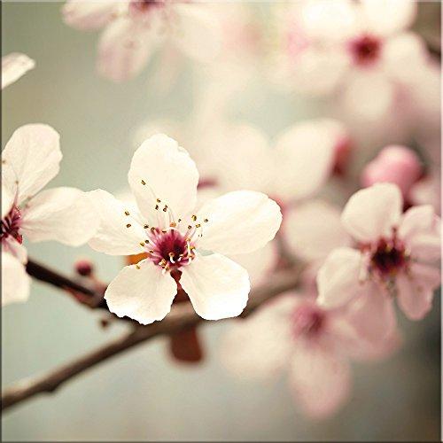 artissimo, Glasbild, 50x50cm, AG2172A, Kirschblüten II, Blumen-Bild, Pastell, Bild aus Glas,...