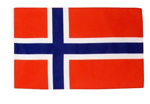 Digni® drapeau Norvège 30 x 45 cm