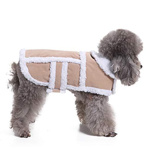 Amphia - Haustier Hund Hirschleder Mantel Kleidung,Gepolsterte Verdickung Nachahmung Hirsch Lederjacke Hundekostüme Pet Kleidung(Beige,M)
