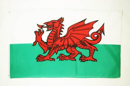 AZ FLAG Flagge Wales 90x60cm - WALISISCHE Fahne 60 x 90 cm - flaggen Top Qualität
