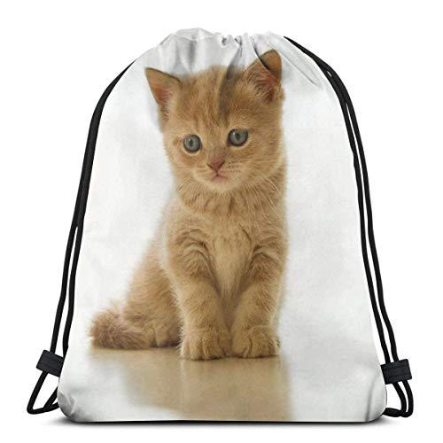 Cap pillow Cute Blue Bird Tree Branch Custom Drawstring Shoulder Bags Gym Bag Travel Backpack Lightweight Gym for Man Women 16.9