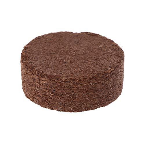 ecmqs sustrato (ladrillos–Reptile Nuez de coco ladrillos de sustrato de fibra Literie Natural suelo para terrarios