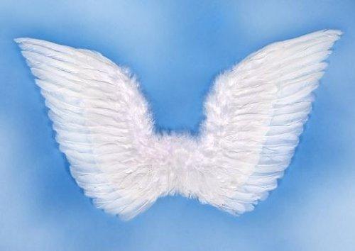 karton–Engel Flügel mit Federn, weiß, One Size (Kostüm Engel-flügel Für Erwachsene)