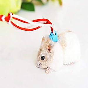 MYYXGS Hamsterleine – Geschirr – Geschirr – leicht zu tragen – leicht zu tragen – Kleintierbekleidung – spazieren gehen…