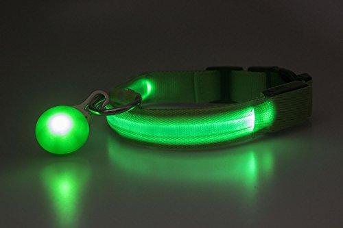 Auraglow Super Bright LED Leuchten Hundehalsband Hohe Sichtbarkeit Blau