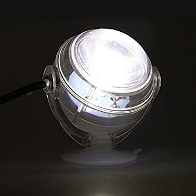 BEITAI Lampe LED sous-Marine intérieure étanche LED Aquarium Light pour Corail récifal Fish Tank Submersible Aquarium Light Spot Lamp