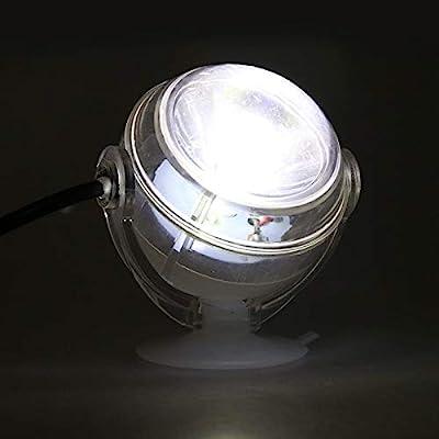 BEITAI Lampe LED sous-Marine intérieure étanche LED Aquarium Light pour Corail récifal Fish Tank Submersible Aquarium Light Spot Lamp