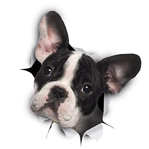 Preisvergleich Produktbild Winston & Bear 3D Hund Aufkleber - 2er-Pack - schwarz / weiß französische Bulldogge Aufkleber für Wand,  Kühlschrank Frenchie Aufkleber