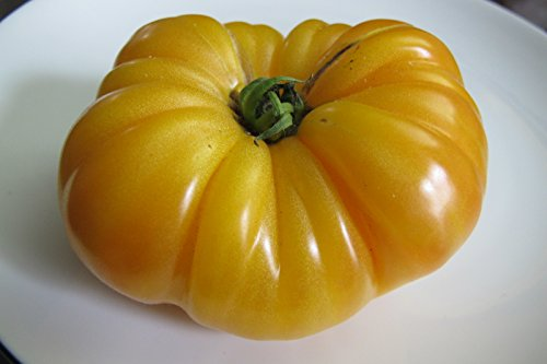 50-graines-tomate-ananas-gout-incomparable
