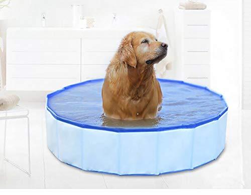 Pro Goleem HundePool tragbare Faltbare Katzen Badewanne Haustier Schwimmbad für kleines Haustier (60x20cm) -