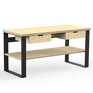 AUPROTEC Profi Design Werkbank 1500 x 750 x 850 mm Arbeitsplatte Multiplex 40mm mit 2 Schubladen und Ablage Holz Werkbankplatte Multiplexplatte Industriequalität Massiv Arbeitstisch