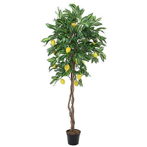 artplants – Künstlicher Zitronenbaum mit 40 Früchten, Naturstamm, 1050 Blätter, 180 cm – Kunstbaum/Deko Baum