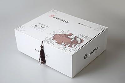 HwaGui Théière Fonte Théière avec infuseur en INOX la Valeur & 4 Chinois Blanc glacé Tasses Théière Gift Set