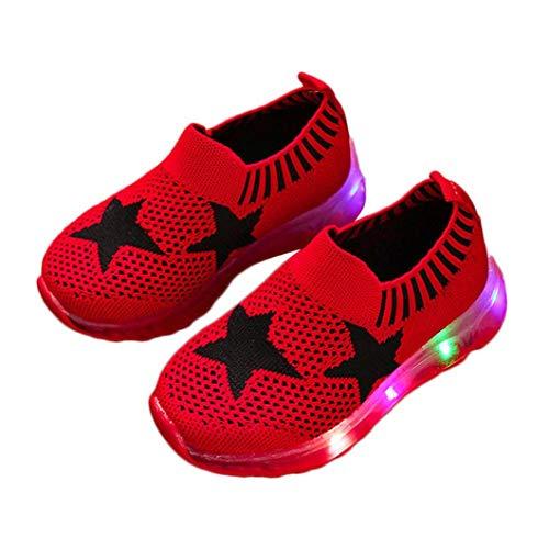 Malloom-Bekleidung Kinder Kind Mädchen Jungen Led Light Star Luminous Sport Mesh Student Casaul Schuhe