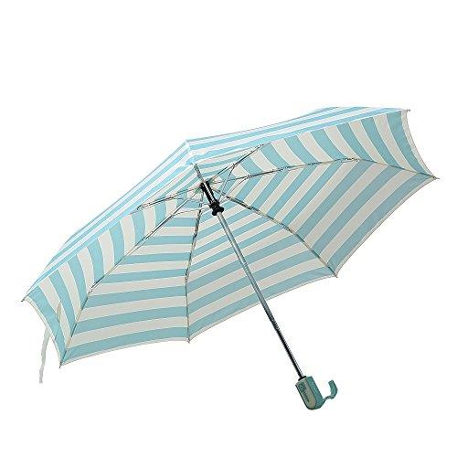 Harrm's Winddichte Reise Outdoor Regenschirm mit Auf-Zu-Automati Blau (Winddicht Regenschirm Compact)