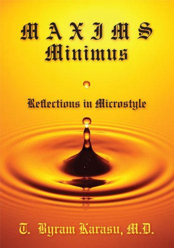maxims-minimus-reflections-in-microstyle