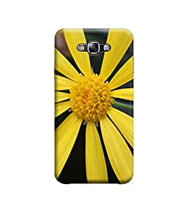 EPICCASE Premium Printed Mobile Back Case Cover With Full protection For Samsung Galaxy E5 (Designer Case)
