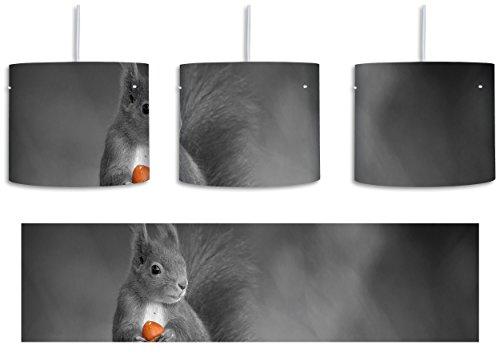 süßes Eichhörnchen mit Nuss schwarz/weiß inkl. Lampenfassung E27, Lampe mit Motivdruck, tolle Deckenlampe, Hängelampe, Pendelleuchte - Durchmesser 30cm - Dekoration mit Licht ideal für Wohnzimmer, Kinderzimmer, Schlafzimmer