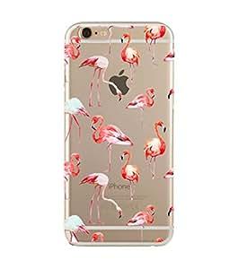 Orange & Red Flamingo Transparent Case for iPhone 5/5s-1AMZNPD135