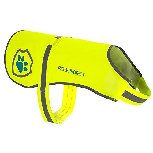 Premium Chien Gilet réfléchissant Fluo haute visibilité de sécurité |, marche, Jogging, Training 16–130livres.