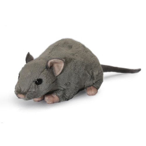 Soft Toy Ratte mit Quietschelement, Unbekannt ()