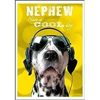 Birthday Card (WDM8047) Nephew - Dalmatian Dog