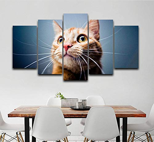 zmnba Kein Rahmen Canvas Pictures Home Decorwork 5 Pieces Cute Big Eyes Cat Painting Modular Hd Prints Animal Poster Living Room Wall Art