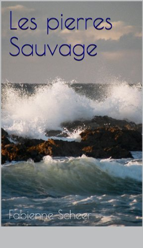 Les pierres Sauvage (French Edition)