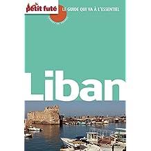 Liban 2012/2013 Carnet Petit Futé