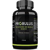TESTOSTERONE BOOSTER de Probulus: aumento de la masa muscular, definición, aumento de la testosterona, aumenta la libido con Tribulus terrestris puro. 100% NATURAL - 60 cápsulas - ENVÍO GRATIS