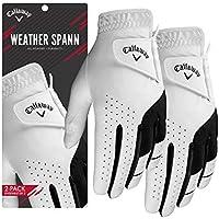 Callaway 2019 Men's Weather Spann Golf Glove