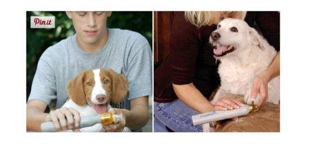 Hunde- und Katzen Krallenschneider Krallentrimmer Pedi Paws *das Original* - 4