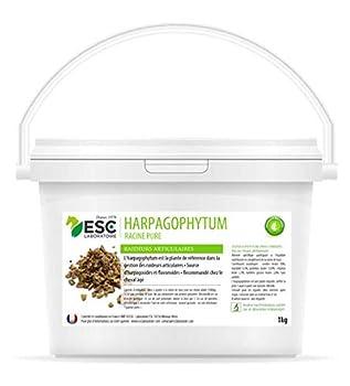 ESC Laboratoire Harpagophytum Cheval - 1 kg * Harpagophytum Pur *