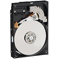 WD WD1600AVJS AV Hard Disk Interno da 160 GB,