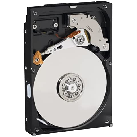Western Digital WD3200AVJS - Disco duro interno de 320 GB (3.5