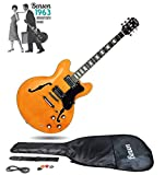 Semi Acoustic Guitars Review and Comparison