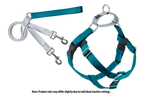 2 Hounds Design Freedom No-Pull Dog Harness with Leash, Large, 1-Inch Wide, Teal