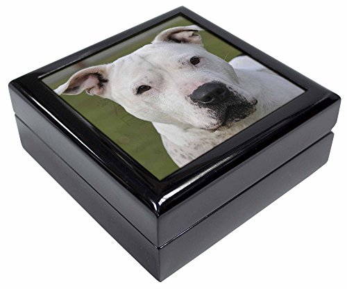 Advanta - Jewellery Boxes American Staffordshire Bull Terrier Hund Andenken/Schmuck Box Weihnachten Geschenk (Hund Schmuck Bull Terrier)