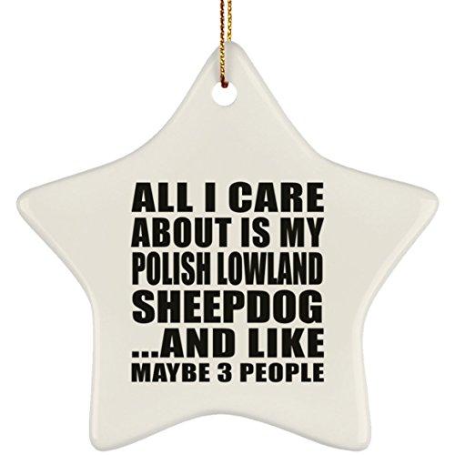 Designsify All I Care About is My Polish Lowland Sheepdog - Star Ornament Stern Weihnachtsbaumschmuck aus Keramik Weihnachten - Geschenk zum Geburtstag Jahrestag Muttertag Vatertag Ostern - Polish Pottery Christmas Ornament