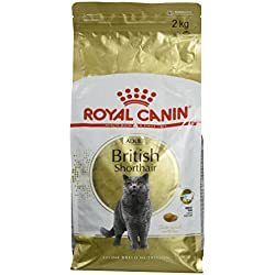 ROYAL CANIN BRITISH SHORTHAIR ADULT sac de 2 kg