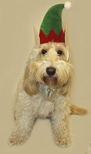 Weihnachten Pet Hüte - Elf Hut für Katzen -