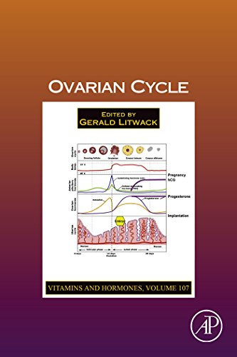 Ovarian Cycle (Vitamins and Hormones)