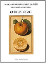 Citrus Fruit (Paper Museum of Cassiano dal Pozzo)
